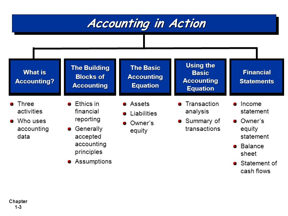 Accounting in Action What is Accounting