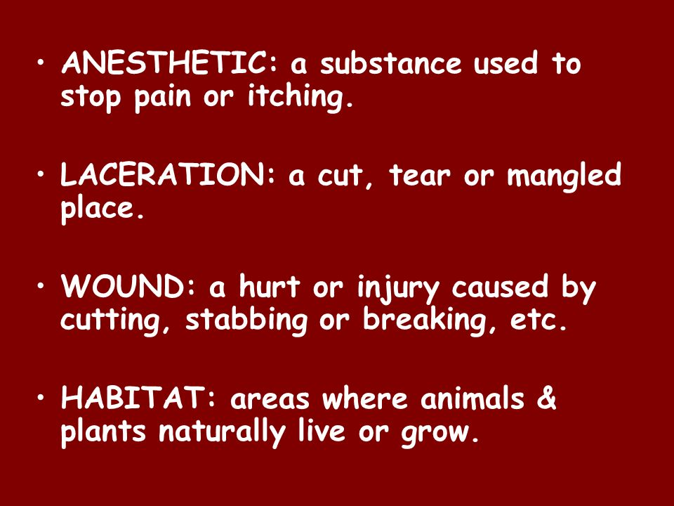 ANESTHETIC: a substance used to stop pain or itching.