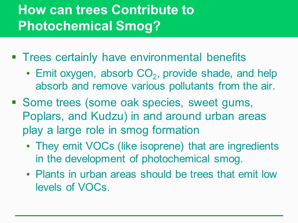 How can trees Contribute to Photochemical Smog
