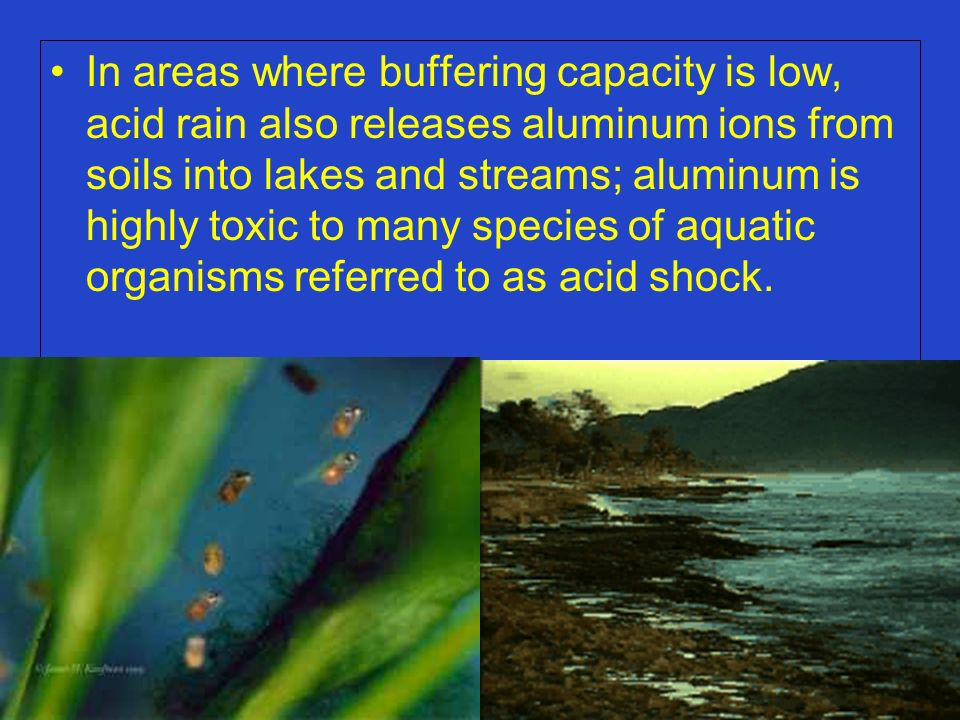 In areas where buffering capacity is low, acid rain also releases aluminum ions from soils into lakes and streams; aluminum is highly toxic to many species of aquatic organisms referred to as acid shock.