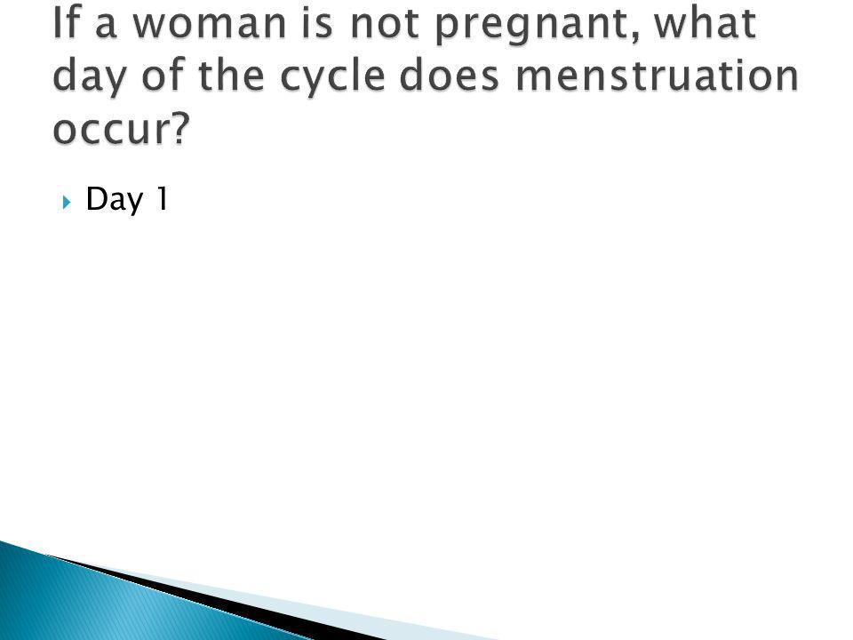 If a woman is not pregnant, what day of the cycle does menstruation occur
