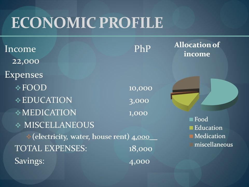 ECONOMIC PROFILE Income PhP 22,ooo Expenses FOOD 10,000