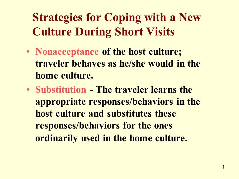 Strategies for Coping with a New Culture During Short Visits