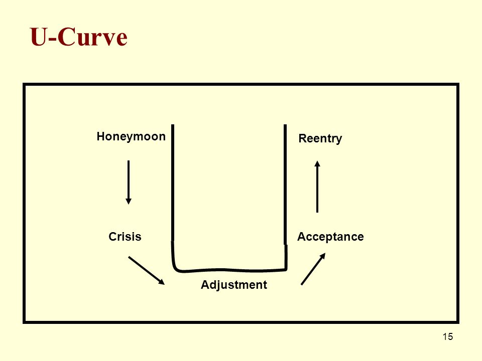 U-Curve Honeymoon Reentry Crisis Acceptance Adjustment