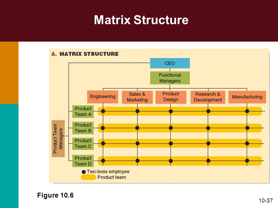 Matrix Structure Figure 10.6