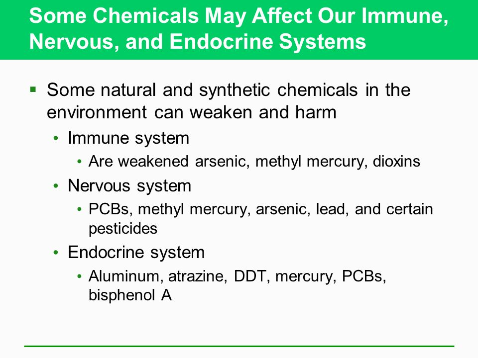 Some Chemicals May Affect Our Immune, Nervous, and Endocrine Systems