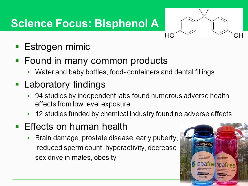 Science Focus: Bisphenol A