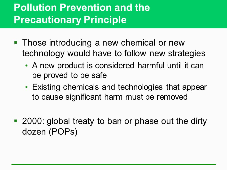 Pollution Prevention and the Precautionary Principle
