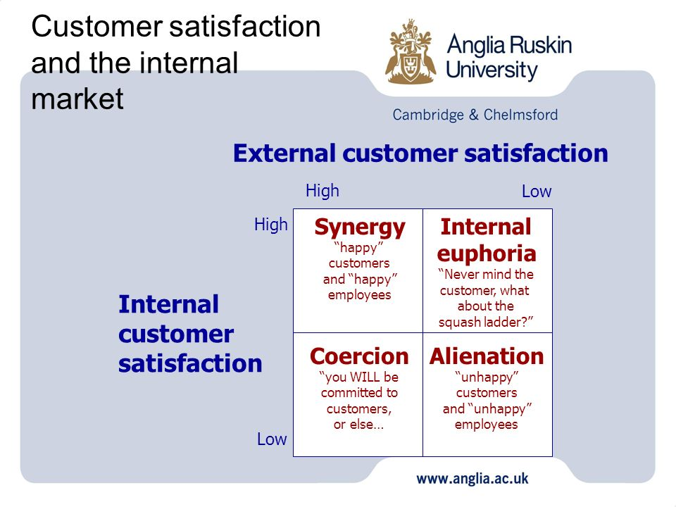 Customer satisfaction and the internal market