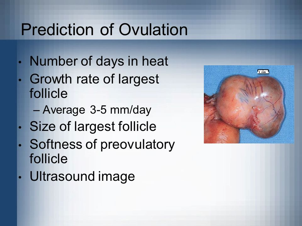 Prediction of Ovulation
