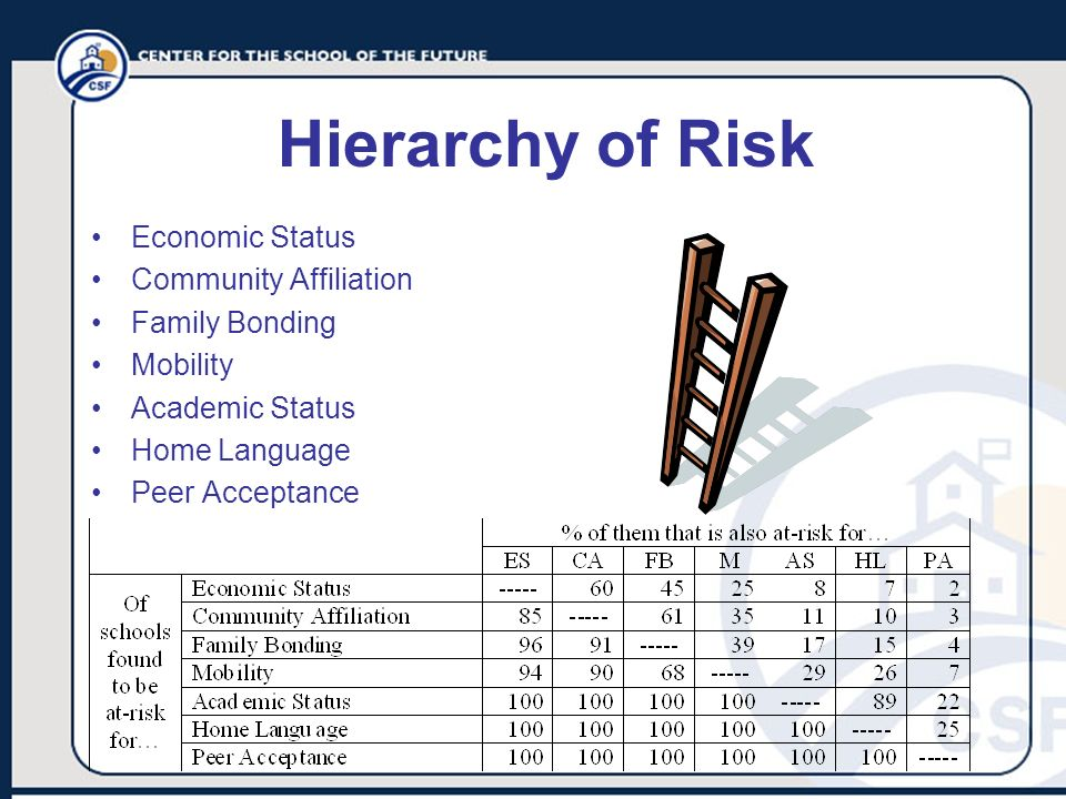 Hierarchy of Risk Economic Status Community Affiliation Family Bonding