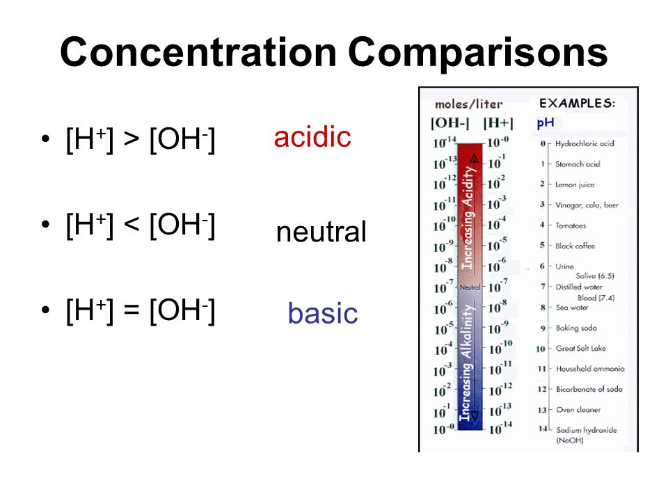 Concentration Comparisons