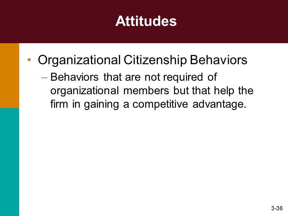 Attitudes Organizational Citizenship Behaviors