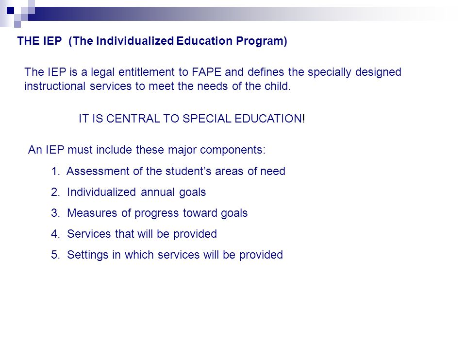 THE IEP (The Individualized Education Program)