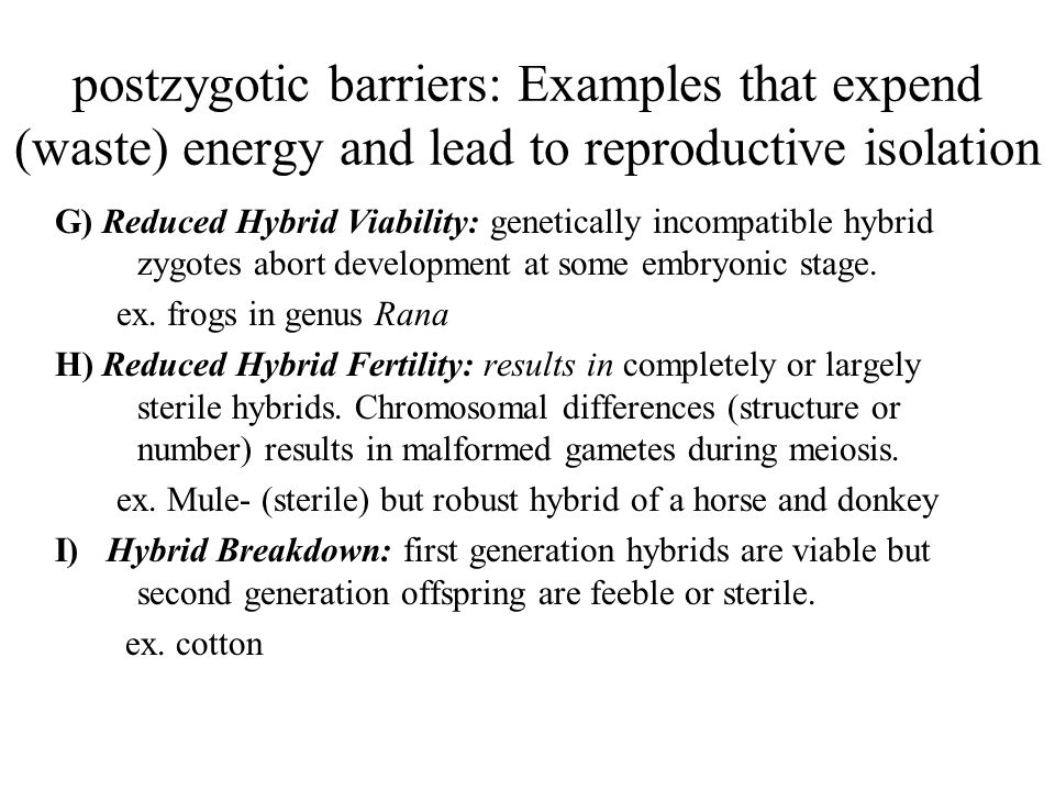 postzygotic barriers: Examples that expend (waste) energy and lead to reproductive isolation