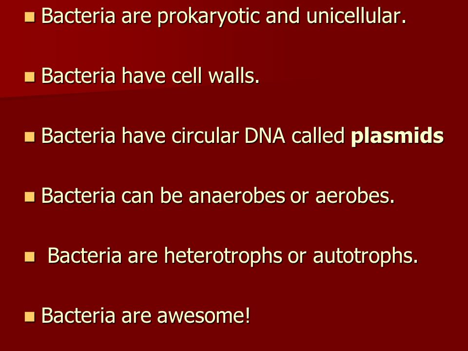 Bacteria are prokaryotic and unicellular.