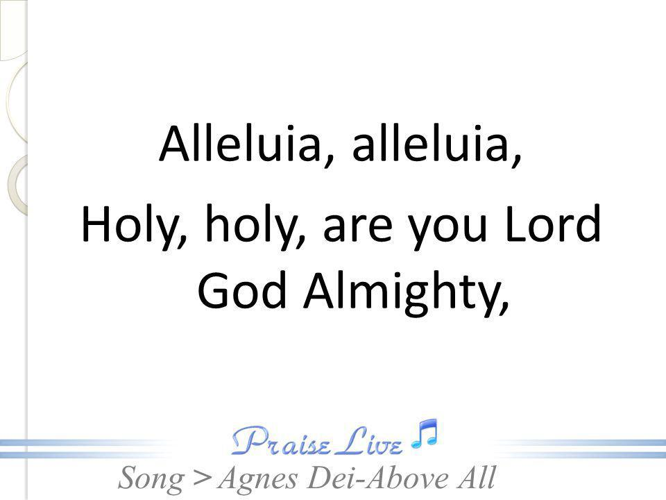 Alleluia, alleluia, Holy, holy, are you Lord God Almighty,