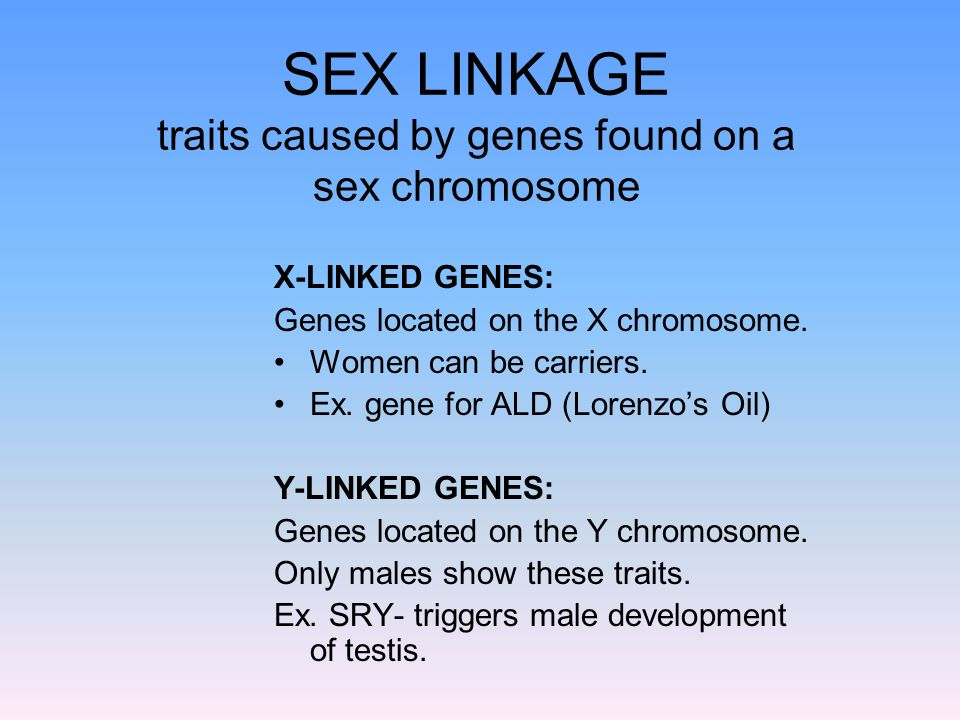 SEX LINKAGE traits caused by genes found on a sex chromosome