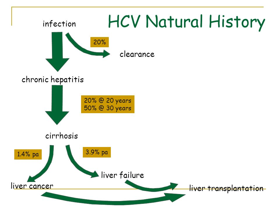 HCV Natural History infection clearance chronic hepatitis cirrhosis
