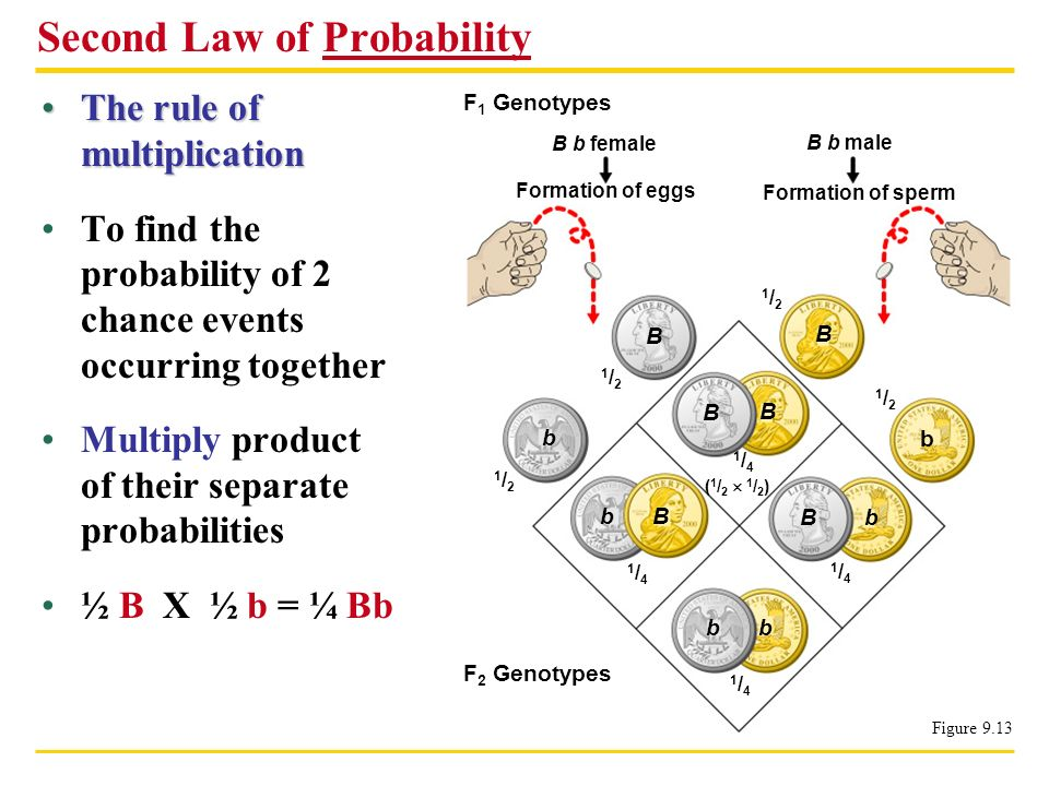 Second Law of Probability