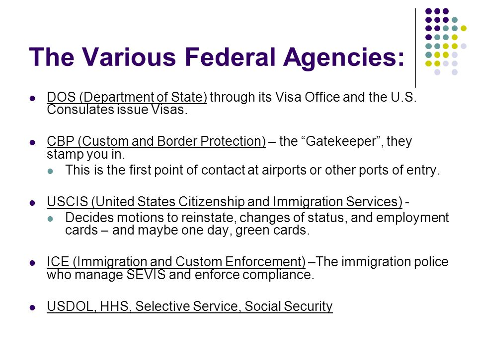 The Various Federal Agencies: