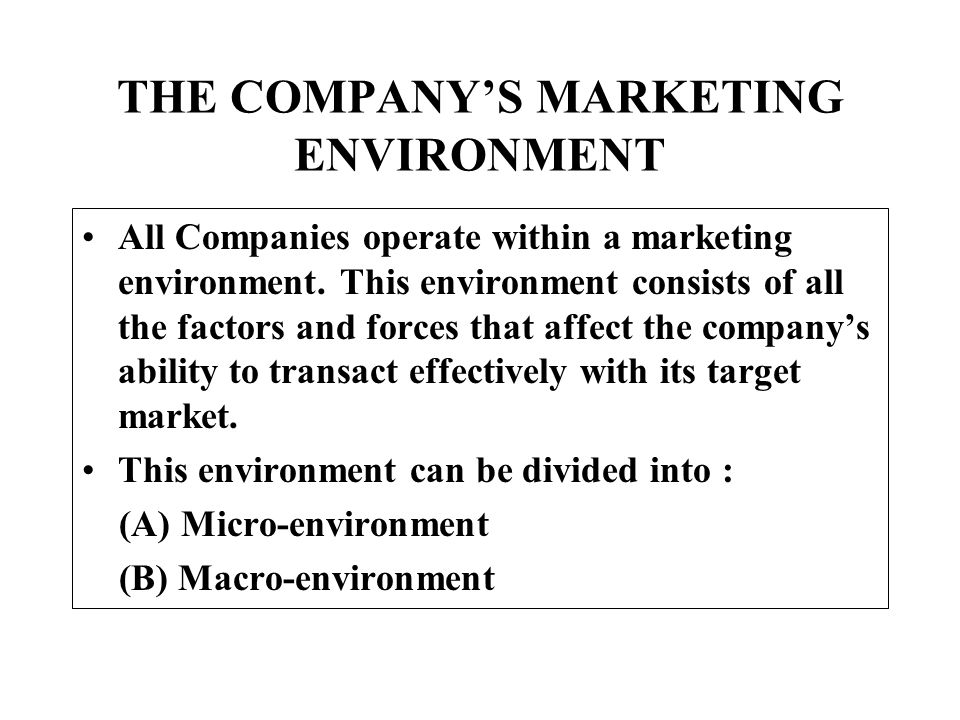THE COMPANY'S MARKETING ENVIRONMENT