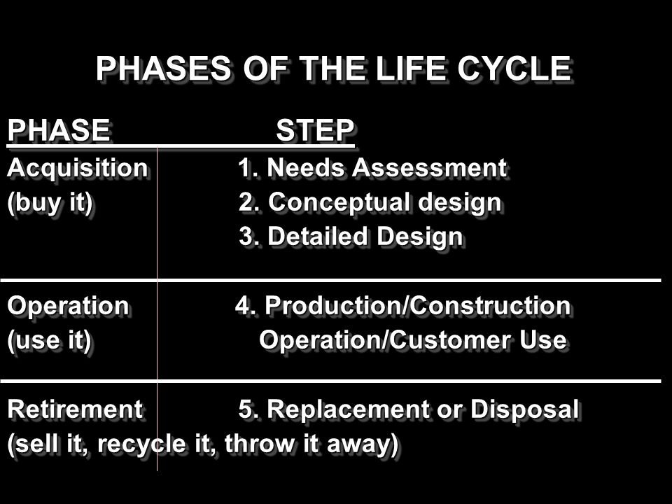 PHASES OF THE LIFE CYCLE