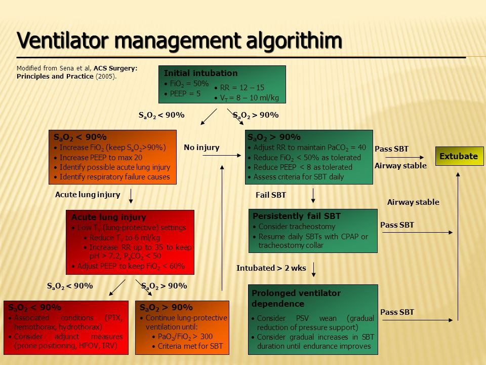 Ventilator management algorithim