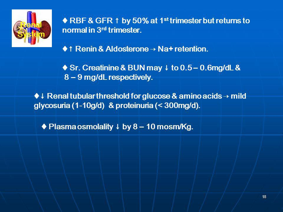 ♦ RBF & GFR ↑ by 50% at 1st trimester but returns to