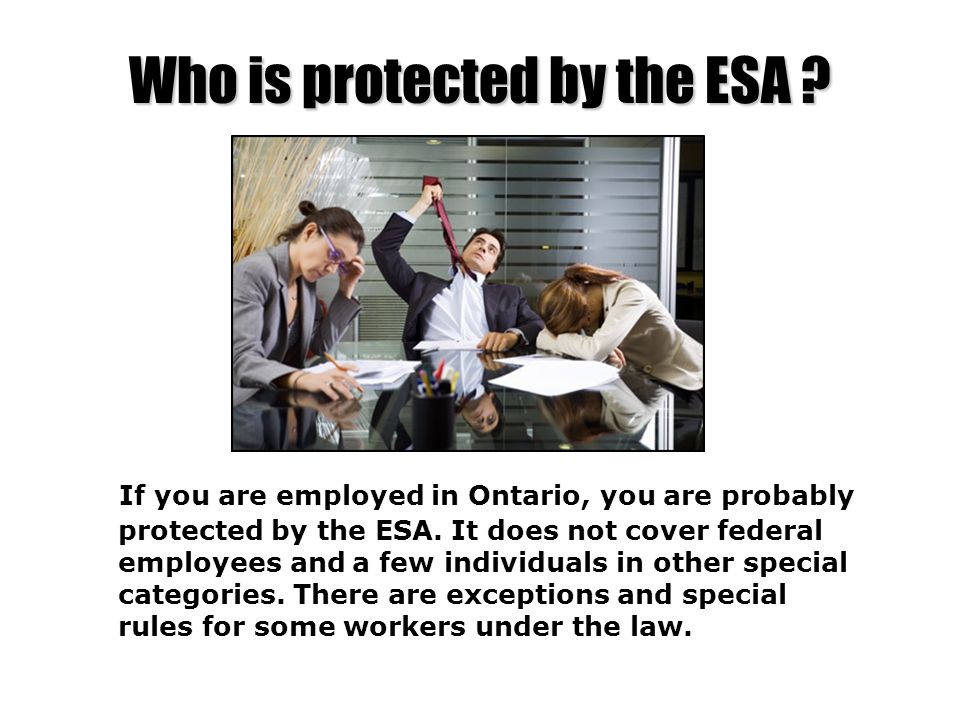 Who is protected by the ESA