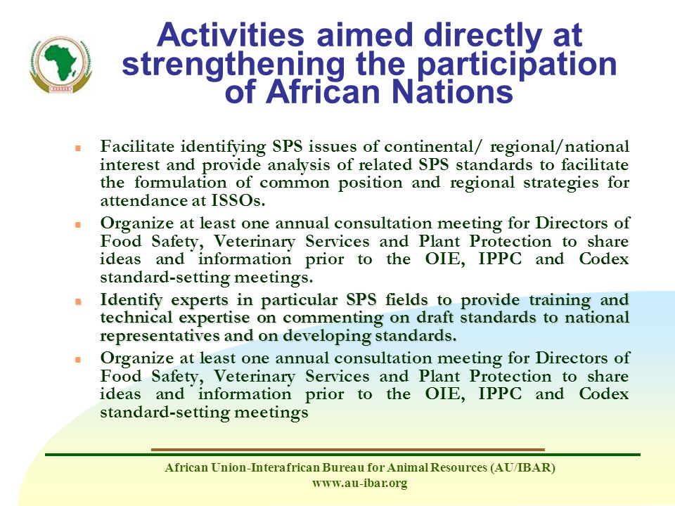 Activities aimed directly at strengthening the participation of African Nations
