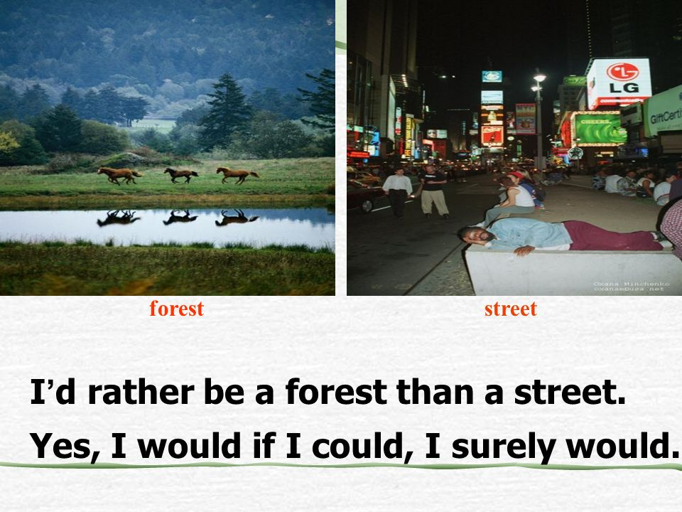 I'd rather be a forest than a street.