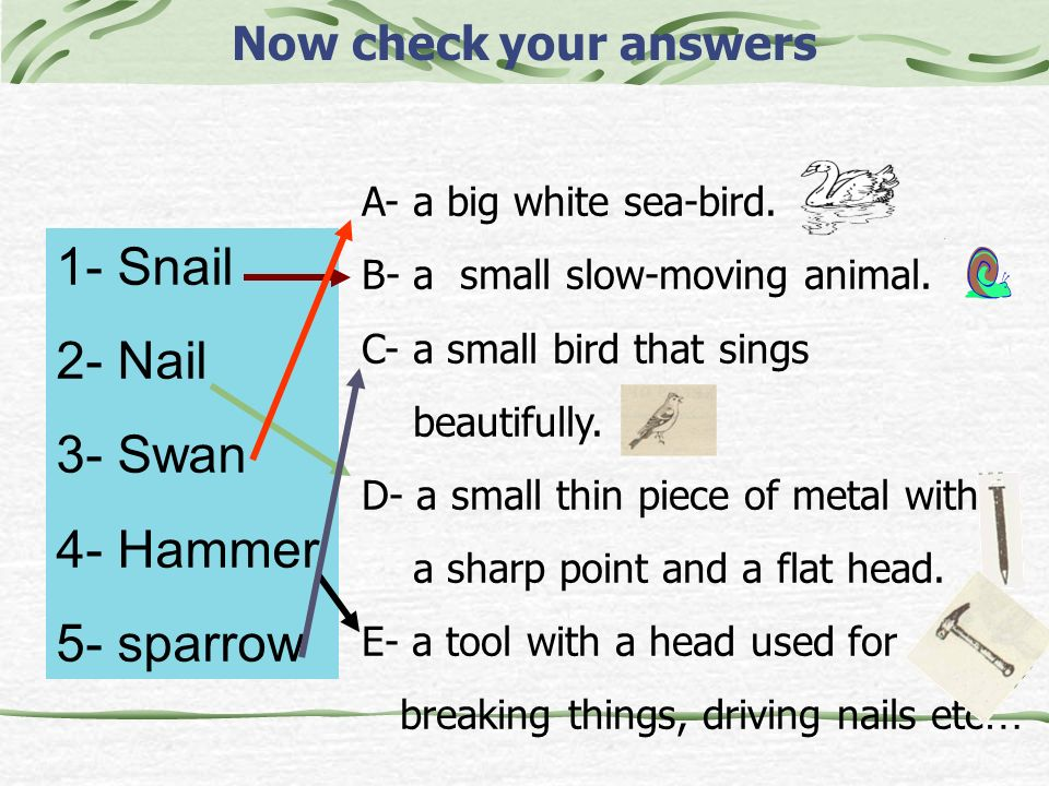 1- Snail 2- Nail 3- Swan 4- Hammer 5- sparrow Now check your answers