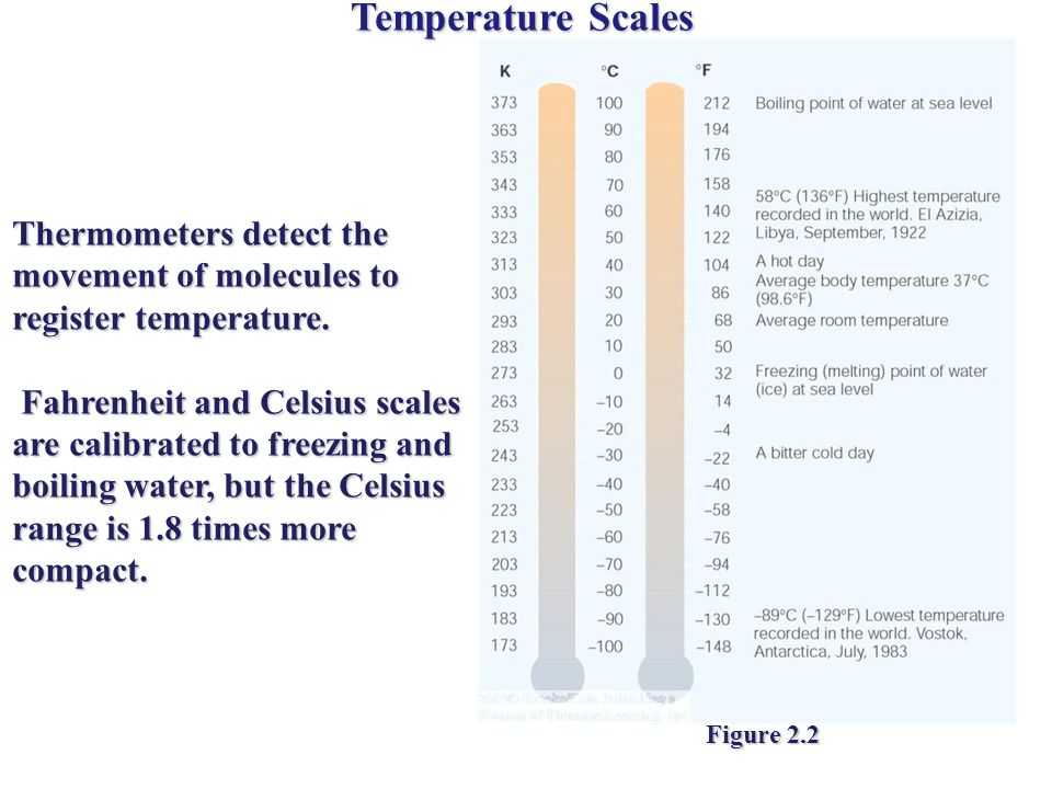 Temperature Scales Thermometers detect the movement of molecules to register temperature.