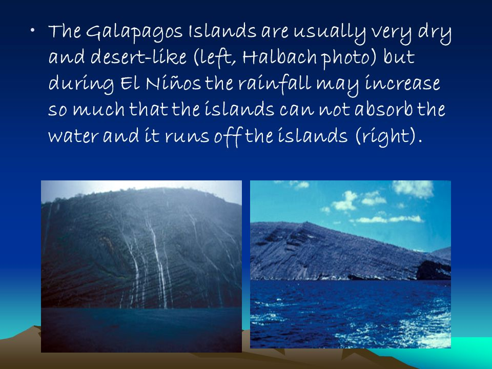 The Galapagos Islands are usually very dry and desert-like (left, Halbach photo) but during El Niños the rainfall may increase so much that the islands can not absorb the water and it runs off the islands (right).