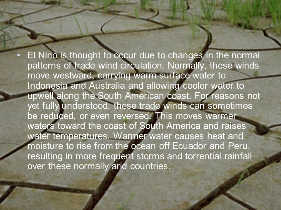El Nino is thought to occur due to changes in the normal patterns of trade wind circulation.