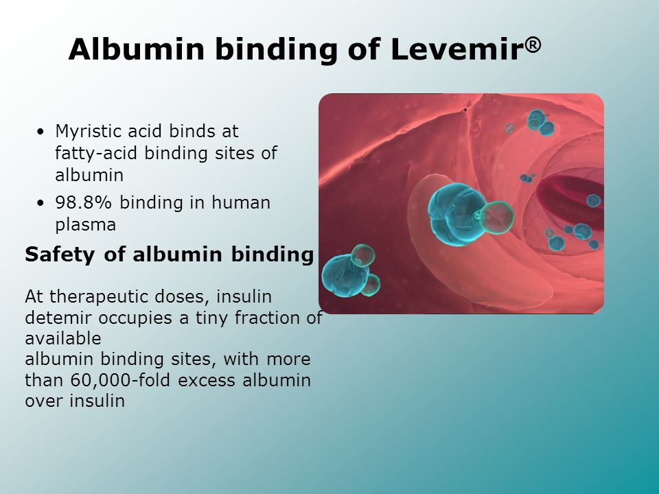 Albumin binding of Levemir®