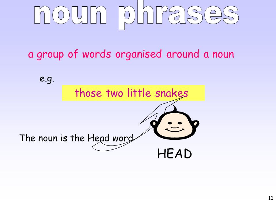 noun phrases HEAD a group of words organised around a noun