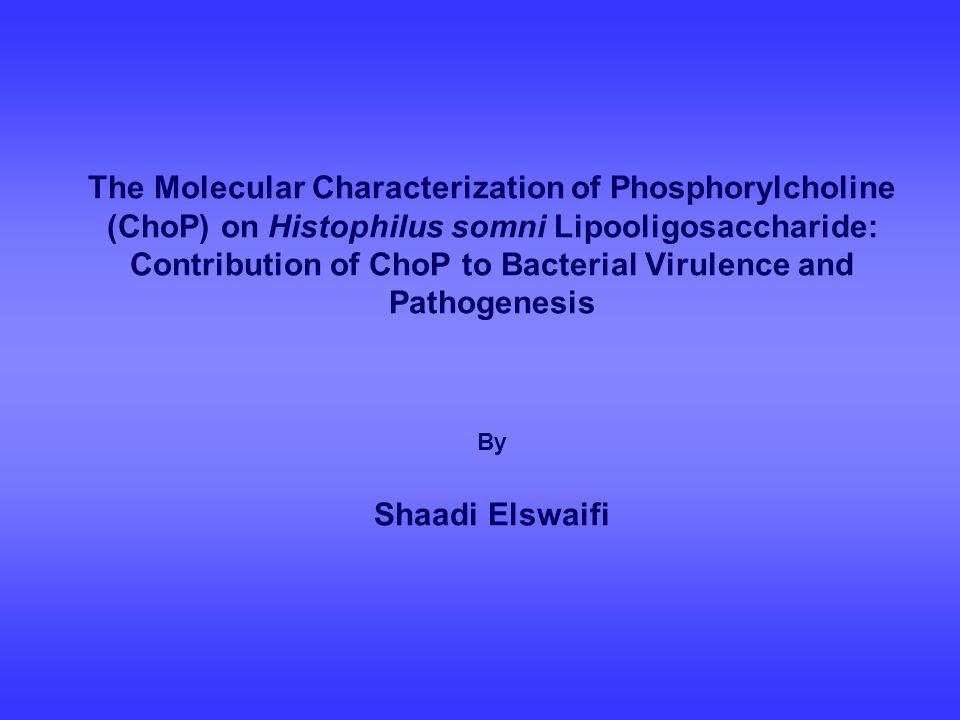 The Molecular Characterization of Phosphorylcholine (ChoP) on Histophilus somni Lipooligosaccharide: Contribution of ChoP to Bacterial Virulence and Pathogenesis