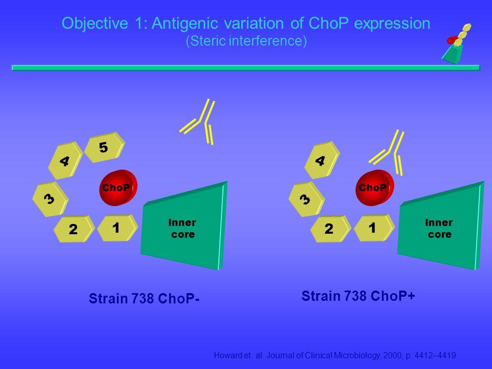 The Molecular Characterization of Phosphorylcholine (ChoP