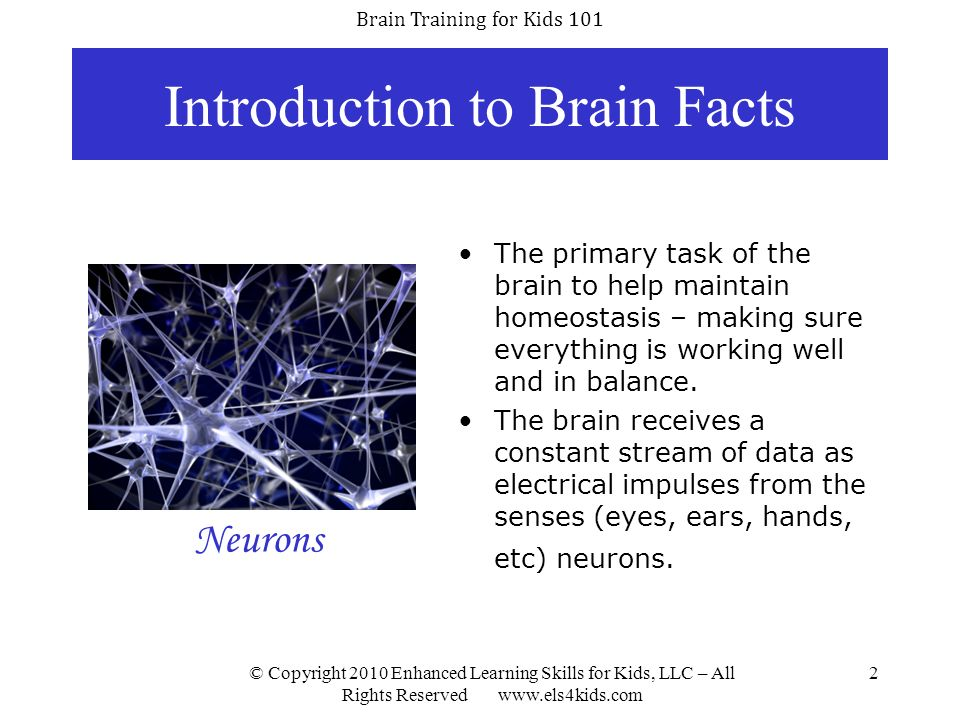 Introduction to Brain Facts