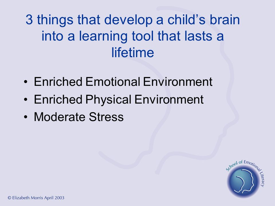 3 things that develop a child's brain into a learning tool that lasts a lifetime