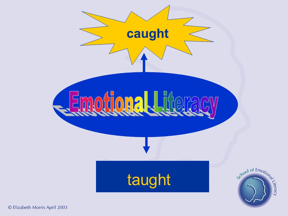 caught Emotional Literacy taught