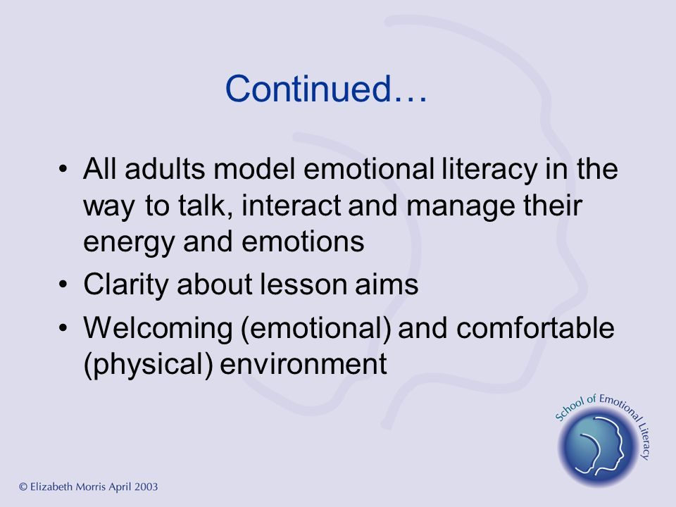 Continued… All adults model emotional literacy in the way to talk, interact and manage their energy and emotions.