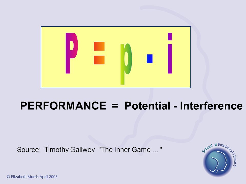 PERFORMANCE = Potential - Interference