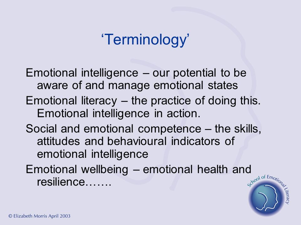 'Terminology' Emotional intelligence – our potential to be aware of and manage emotional states.