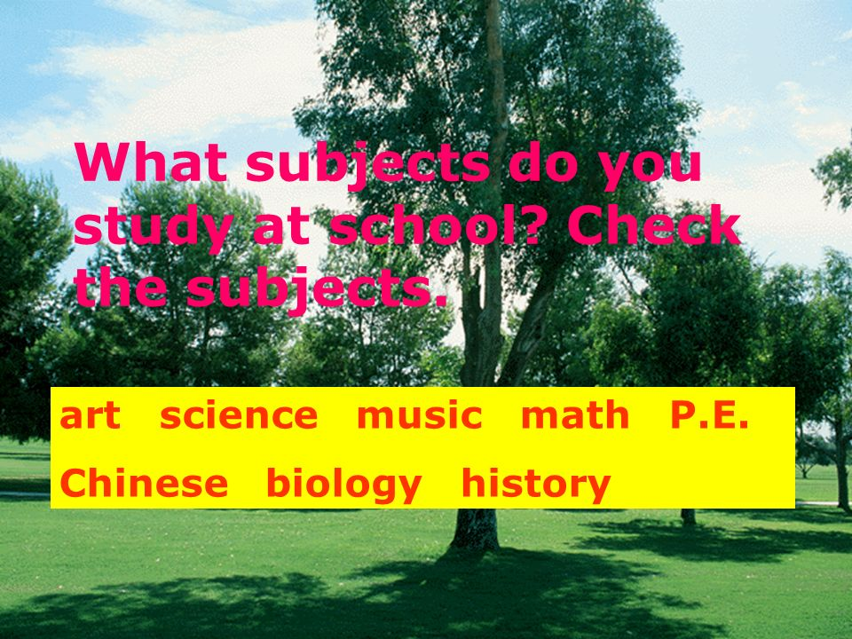 What subjects do you study at school Check the subjects.