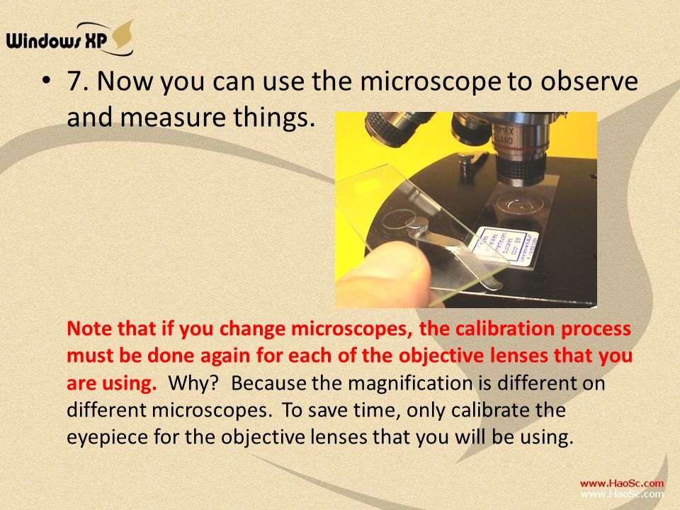 7. Now you can use the microscope to observe and measure things.