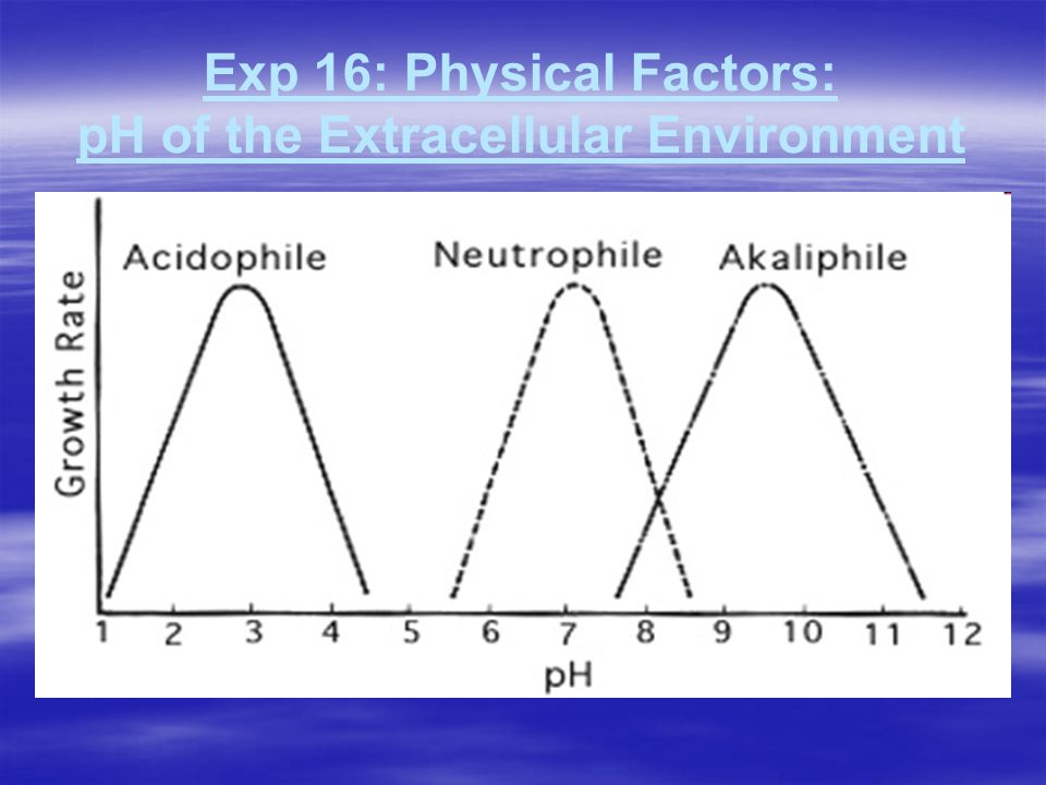 Exp 16: Physical Factors: pH of the Extracellular Environment