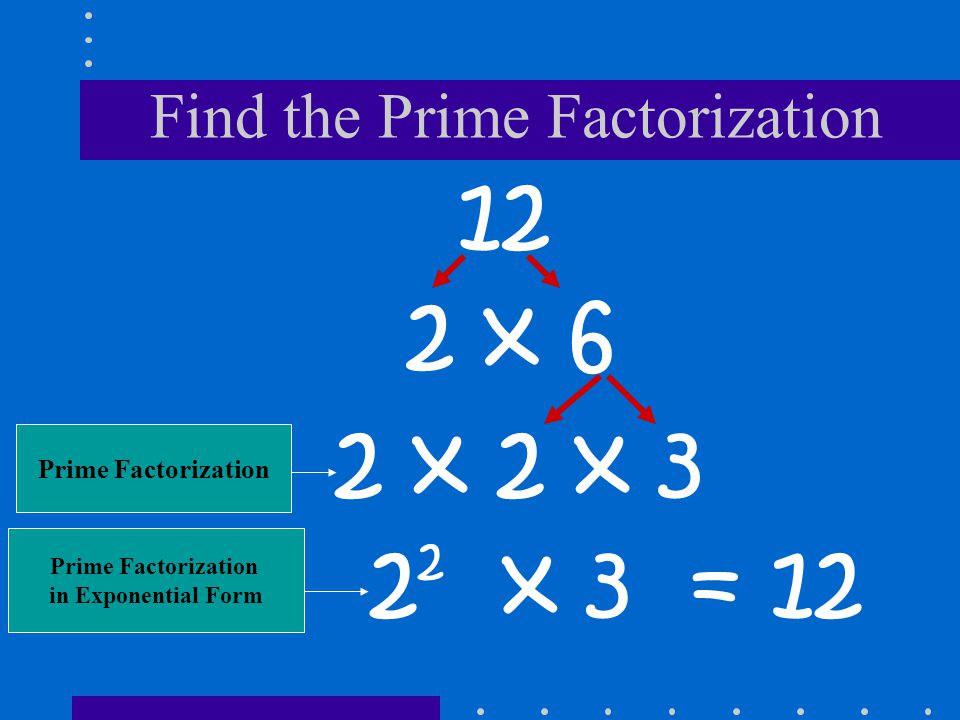 Find the Prime Factorization
